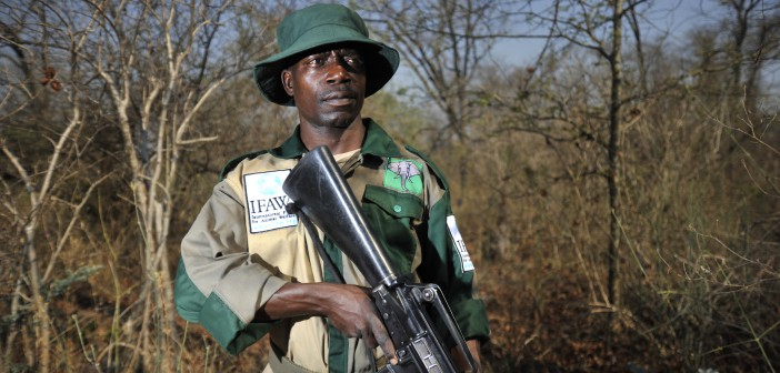 Raphael Chiwindo, 39, patrolling the Liwonde National Park looking for poachers, near Chikolongo.