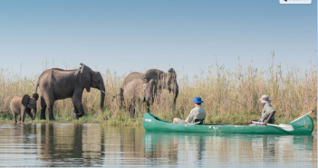 Elephant encounter from the water.