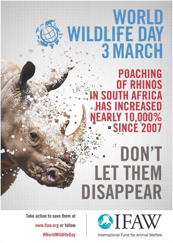 IFAW_poster_rhino