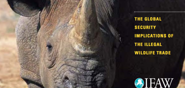 Cover extract from IFAW's report Criminal Nature.