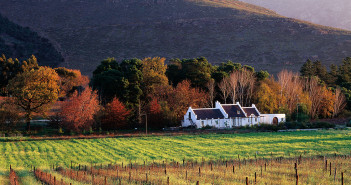 Vineyards in the Franschhoek Valley in the Western Cape.