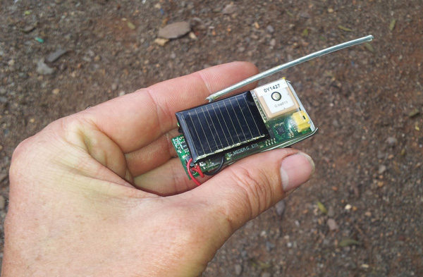 Figure 5. A prototype solar-powered animal tracking tag (photo credit: Savannah Tracking)