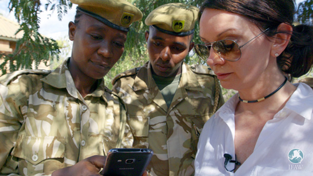 Cuevas and KWS rangers review incident data on a smartphone.