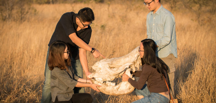 Chinese university students – bold ambassadors for Africa's rhinos