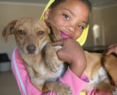 Saving rare rabbits and caring for pets in the Nama-Karoo of South Africa